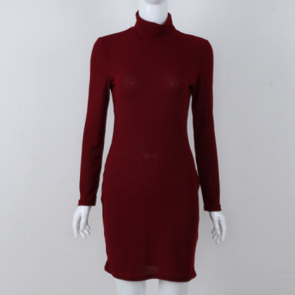 Autumn winter new high collar xiush..