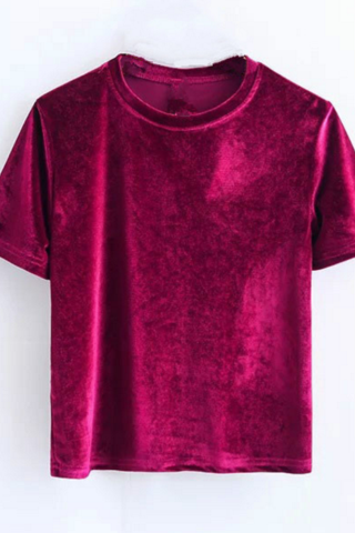 Velvet Crew Neck Short Sleeved Top
